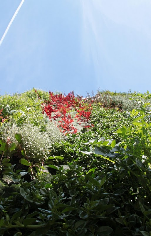 Jard n vertical en paterna for Jardines verticales valencia
